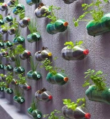 Jardim Reciclável