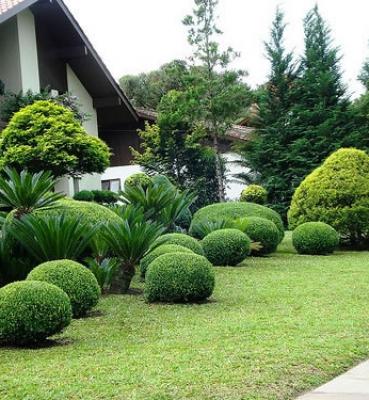 Jardim de Topiarias